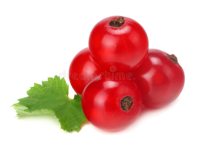Red currant with green leaf isolated on a white background. macro. healthy food royalty free stock images