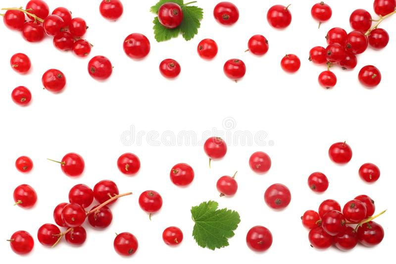 Red currant with green leaf isolated on a white background. top view. healthy food stock images