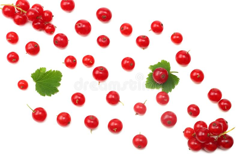 Red currant with green leaf isolated on a white background. top view. healthy food stock photos