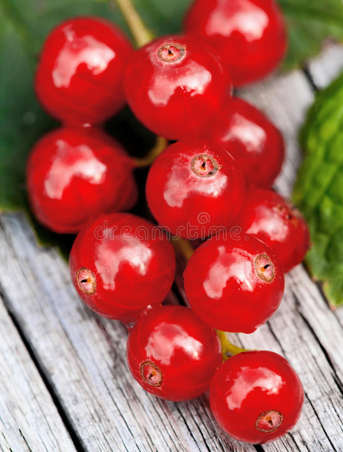 Download Red currant stock image. Image of gourmet, acid, objects - 32948043