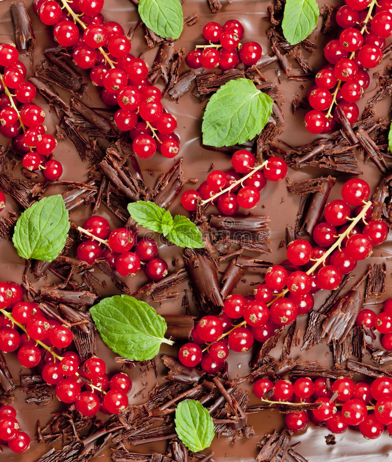 Download Red currant and mint stock photo. Image of green, nutrition - 28527058
