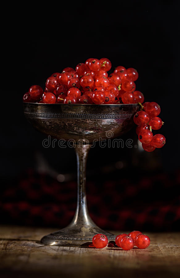 Red currant in a old silver cup in dark food photography style. Red currant in old silver cup in dark food photography style stock image