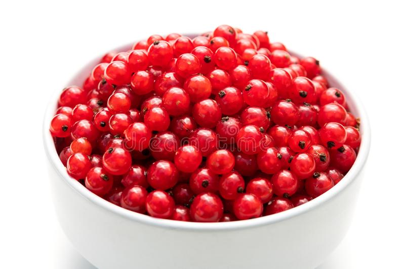Red currant in a white bowl on a white isolated background. Description: red currant in a white bowl on a white isolated background, berry, bunch, closeup, diet royalty free stock photo