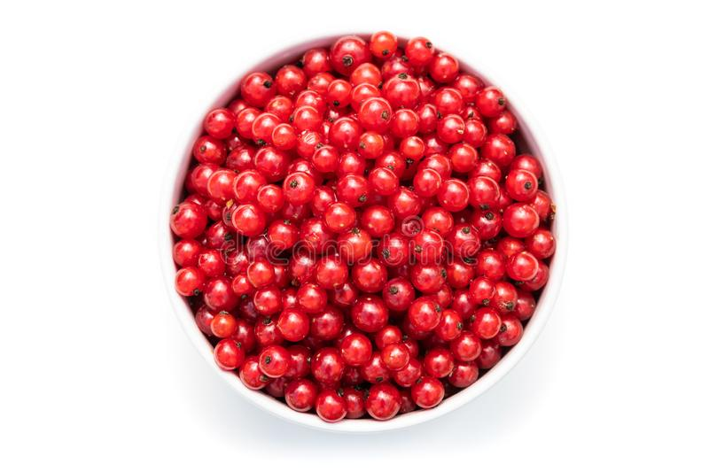 Red currant in a white bowl on a white isolated background. Description: red currant in a white bowl on a white isolated background, berry, bunch, closeup, diet royalty free stock image