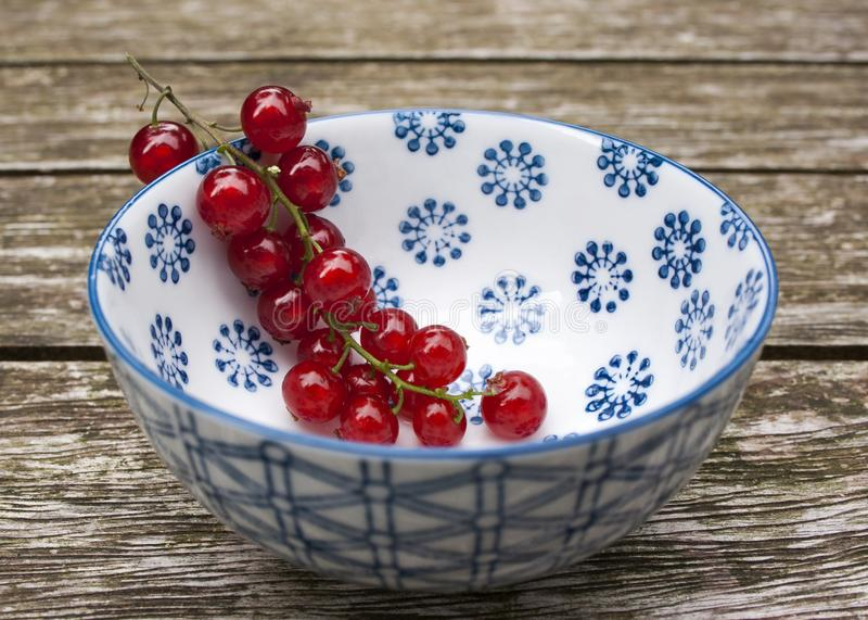 Red currants in ceramic bowl on a garden table royalty free stock image