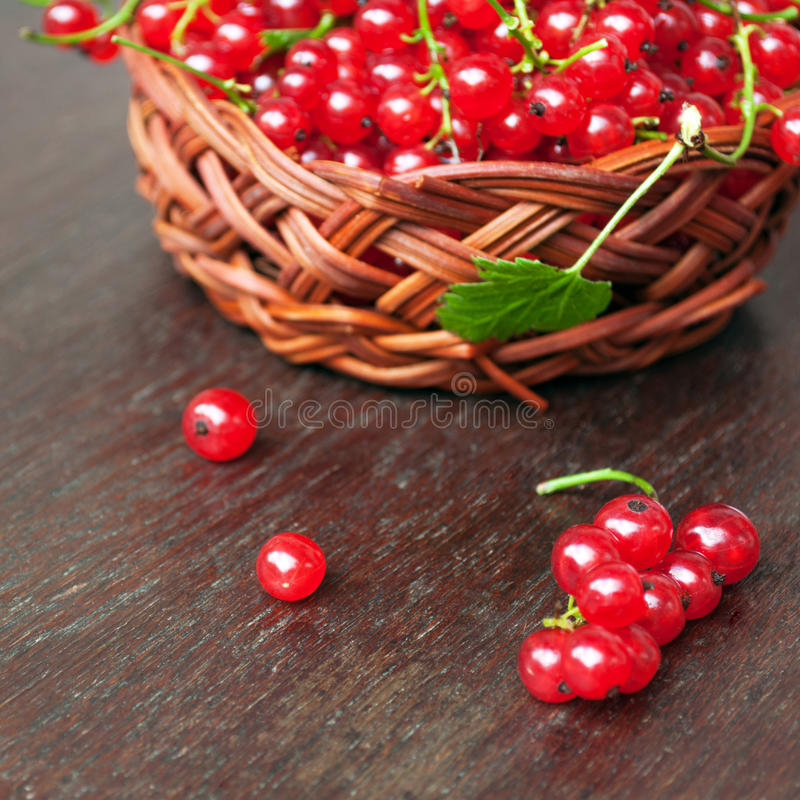 Download Red Currants Stock Image - Image: 34728641