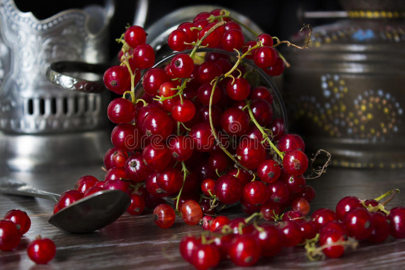 Red currants in a glass. Red currant spilled on the table from an old cup with cup holder royalty free stock photo