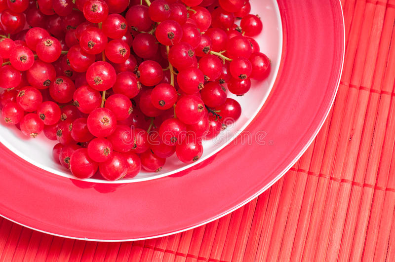 Red currants on plate and tablecloth