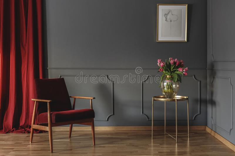 Red curtain and burgundy armchair standing in grey room interior. With pink tulips on gold end table and simple poster hanging on the wall with wainscoting stock images