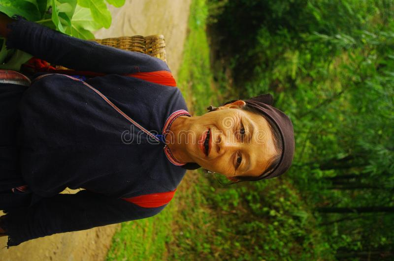 Red Dao ethnic female. Female Red Dao ethnic group (Yen Minh) return fields. She found an edible plant that is transplanted near his house. The tribes of stock photos