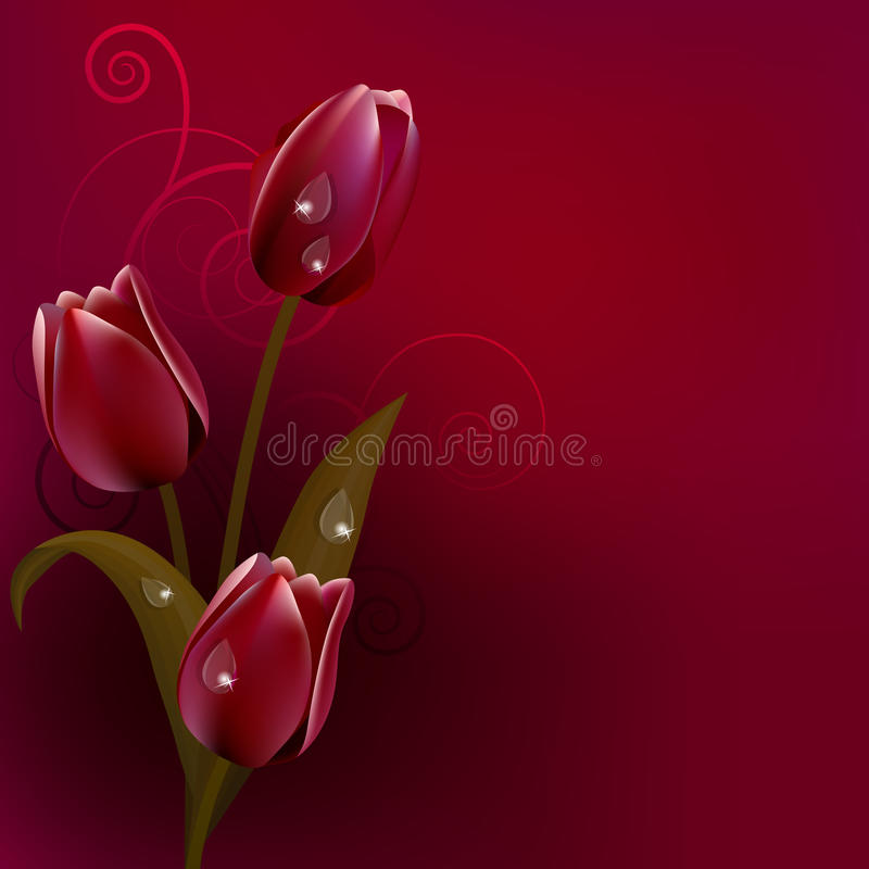 Download Red Dark Background With Tulips Stock Vector - Illustration: 18147708