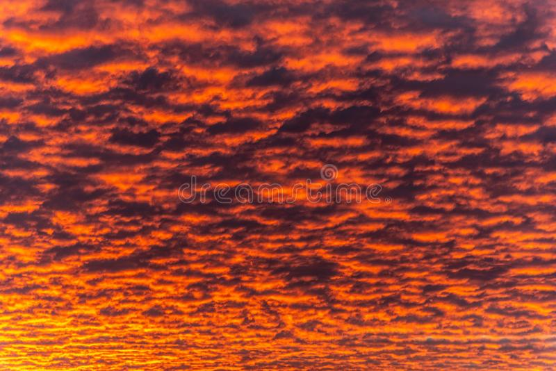 Red dawn with cirrocumulus clouds illuminatedy by rising sun. Morning sky wallpaper background.  stock image