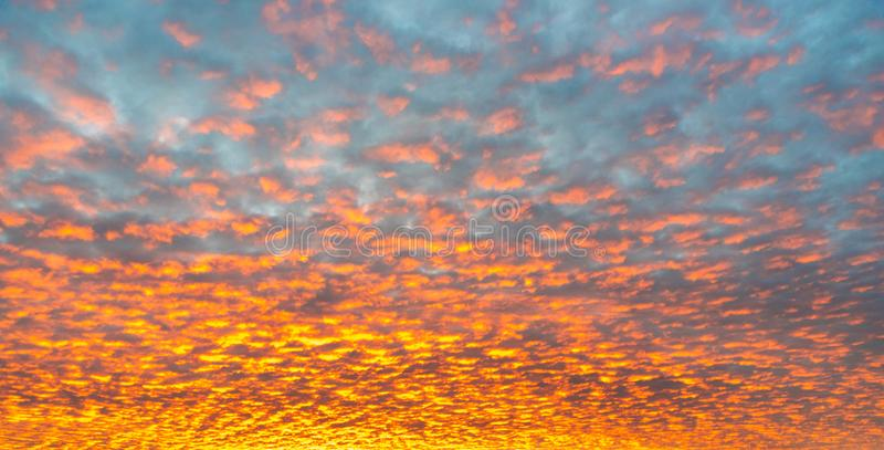 Red dawn with cirrocumulus clouds illuminatedy by rising sun. Morning sky wallpaper background.  stock photo