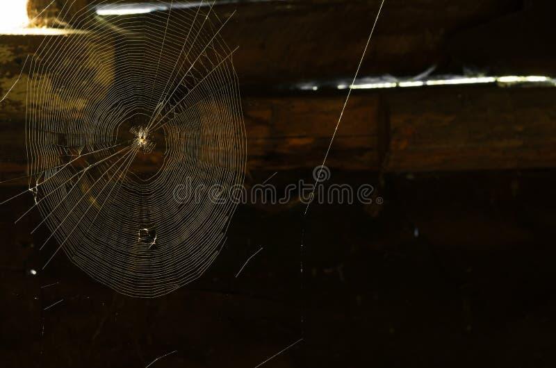 Red de la araña con luz del día de la ventana rural imagen de archivo libre de regalías