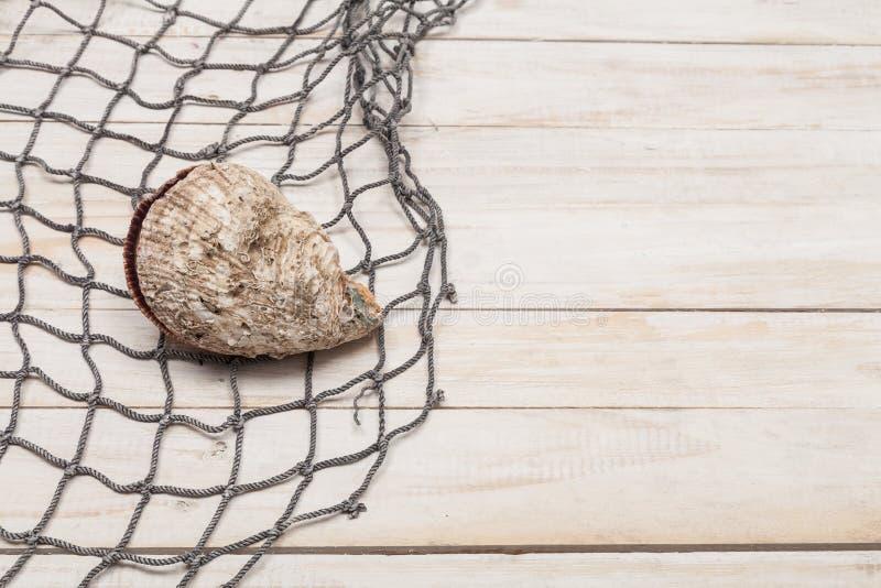Red de pesca con la concha marina en fondo de madera fotografía de archivo libre de regalías