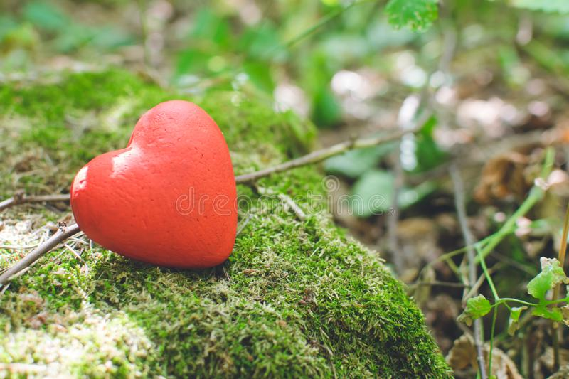 Red decorative heart in the forest. Love concept. Love concept. Red decorative heart in the forest, background, wedding, design, tree, vintage, summer, texture stock photography