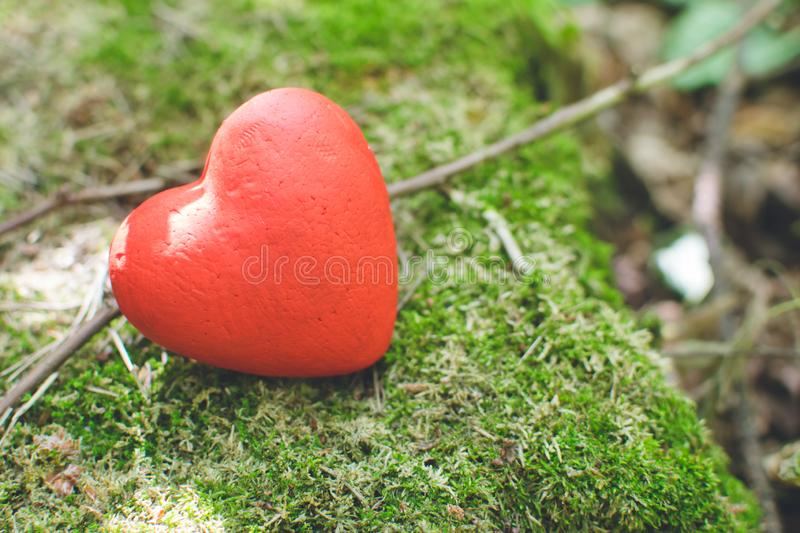 Red decorative heart in the forest. Love concept. Love concept. Red decorative heart in the forest. Day of donor, background, wedding, design, tree, vintage stock image