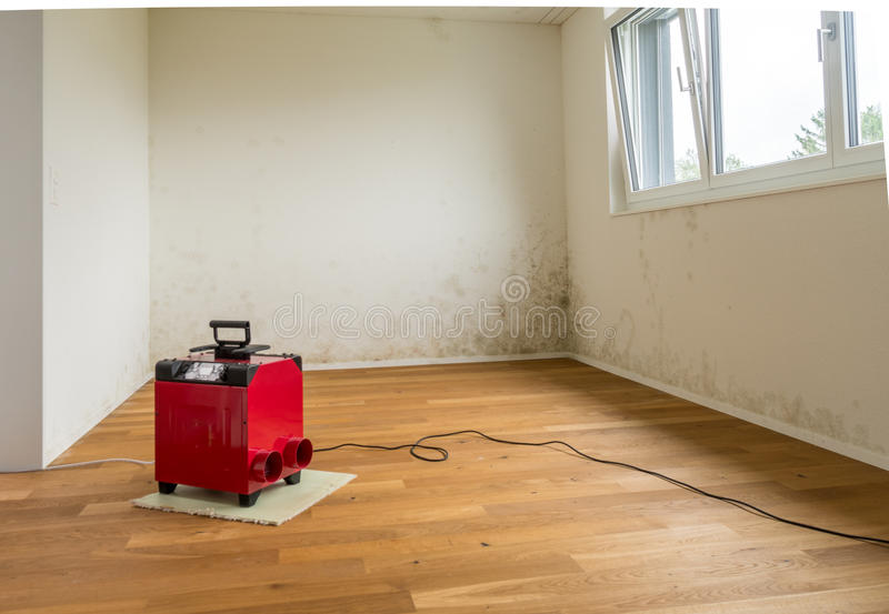 red dehumidifier and mildew and mold in an apartment room stock