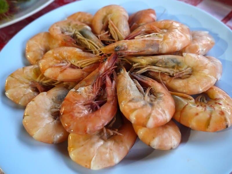 Red delicious boil shrimp disk. Red delicious boil shrimps disk stock image
