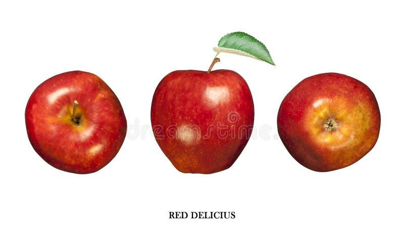 Red delicious di Apple isolato su bianco Tre punti di vista fotografia stock