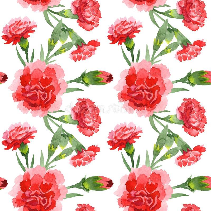 Red dianthus floral botanical flowers. Watercolor background illustration set. Seamless background pattern. Red dianthus floral botanical flowers. Wild spring stock image