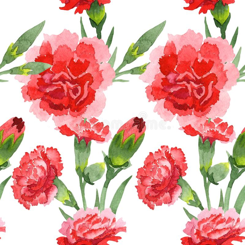Red dianthus floral botanical flowers. Watercolor background illustration set. Seamless background pattern. Red dianthus floral botanical flowers. Wild spring royalty free stock photo