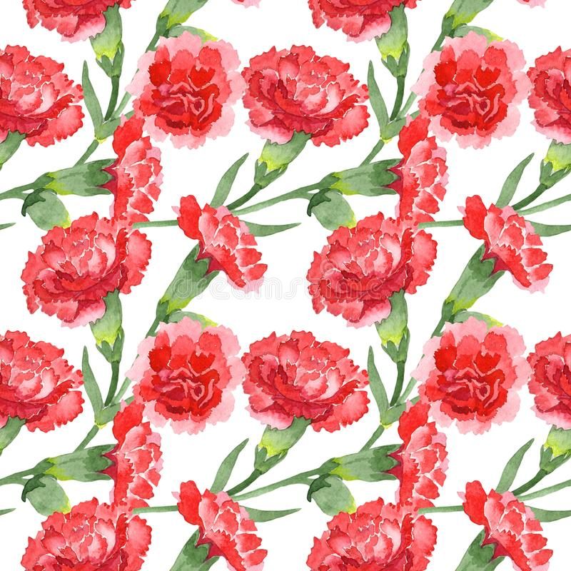 Red dianthus floral botanical flowers. Watercolor background illustration set. Seamless background pattern. Red dianthus floral botanical flowers. Wild spring royalty free stock images