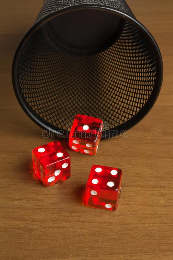 Red dice near a container royalty free stock image