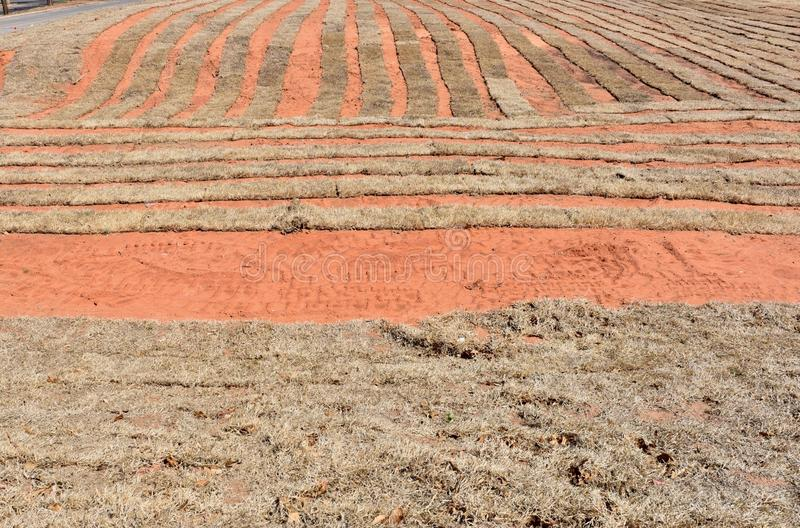 Red dirt of an Oklahoma sod farm in winter. royalty free stock photography