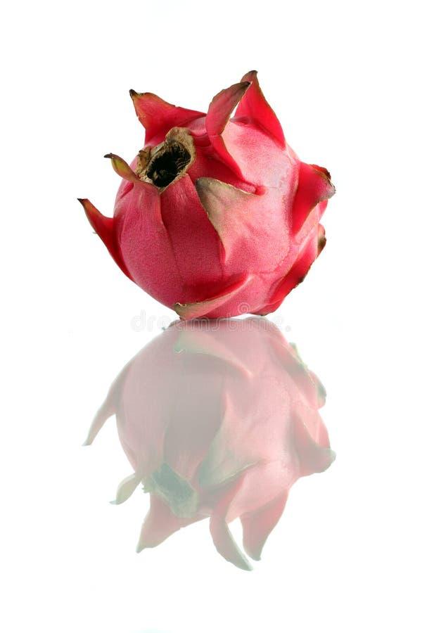 Download Red Dragon Fruit stock photo. Image of organic, exotic - 10674070