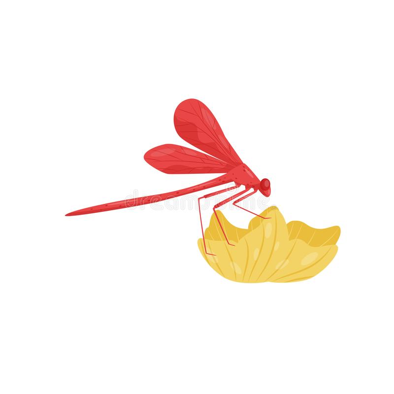 Red dragonfly sitting on flower. Small fast-flying insect with long body and two pairs of wings. Flat vector icon. Bright red dragonfly sitting on yellow flower stock illustration