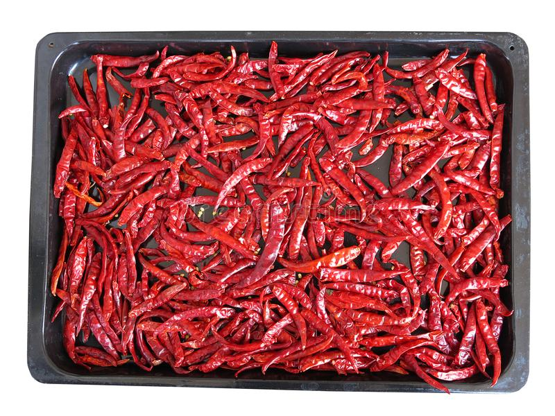 Red dried chilli on black tray isolated on white background stock photo