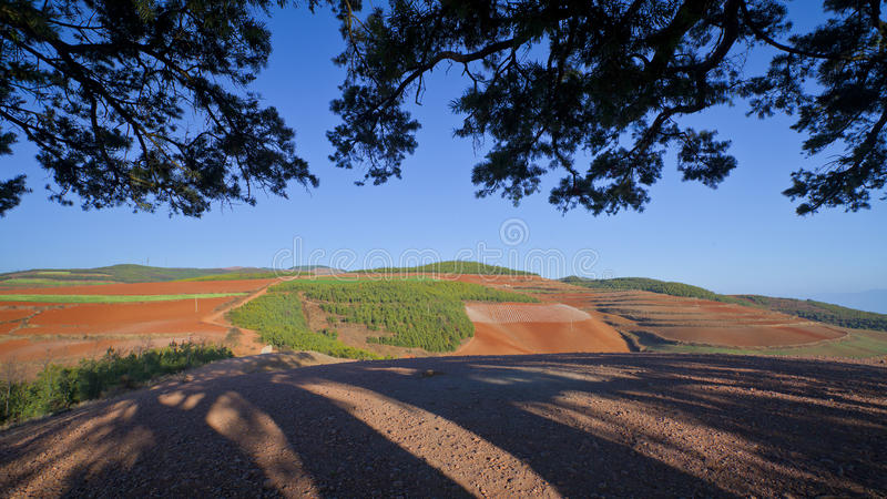 Download The Red Earth Stock Photo - Image: 25139480
