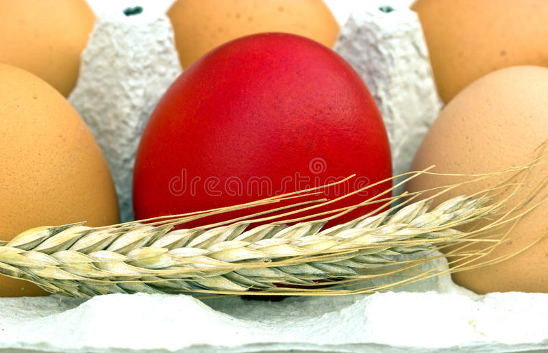 Red Easter Egg. Red egg is a symbol of Easter royalty free stock photo