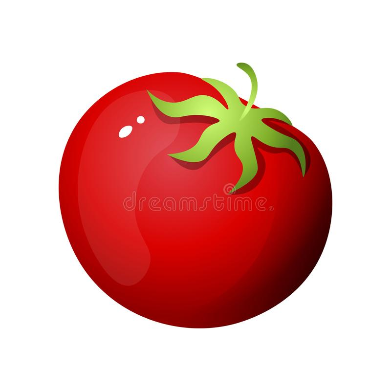 Red eco tomato, for tasty salad or bbq preparation. From food market. Cartoon style. Vector illustration on white background vector illustration