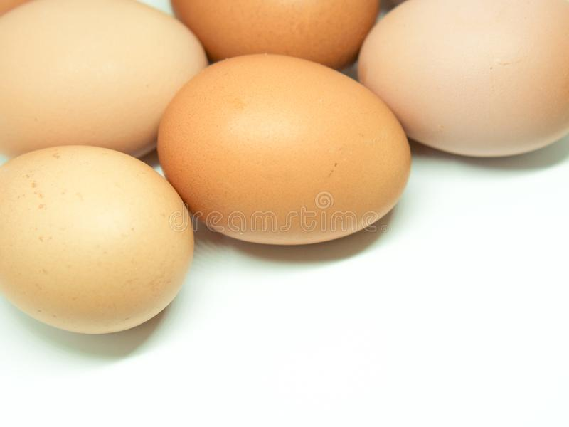 Red eggs. Photography of red eggs on white background stock images
