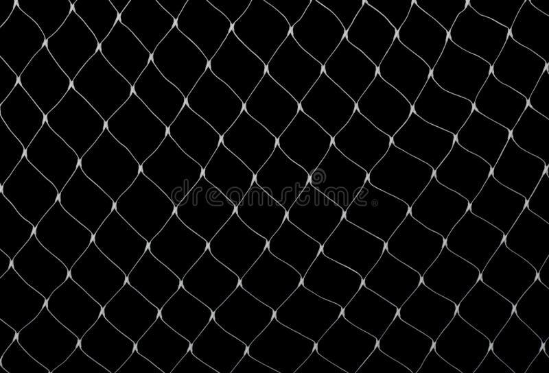 Red en negro fotografía de archivo libre de regalías