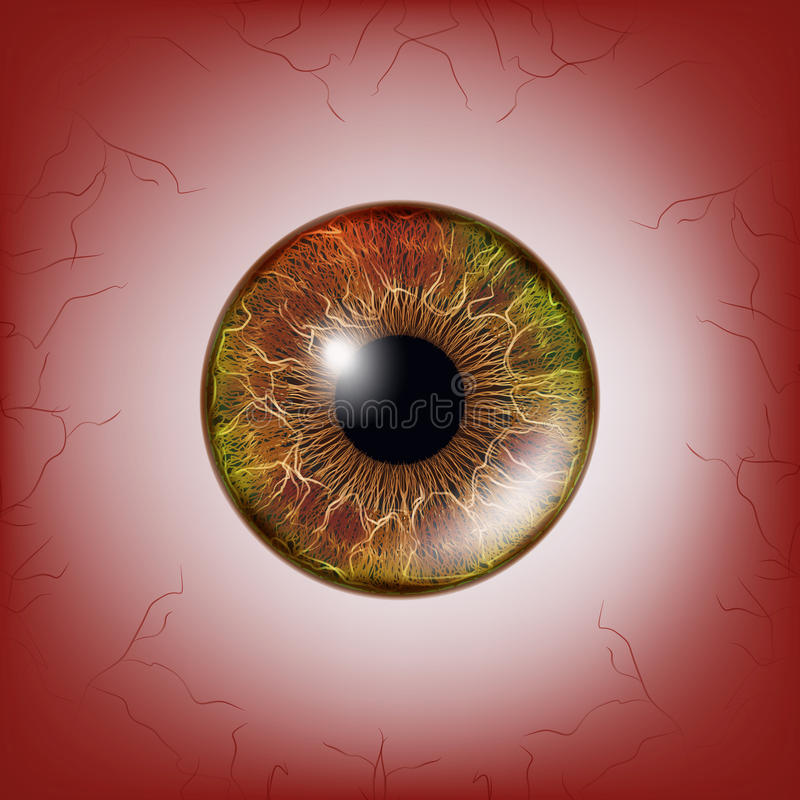 Red Eye. Scary Bloody Realistic Eyeballs. Spooky Human Eyeball With Grunge Blood Splatter. Vector stock illustration