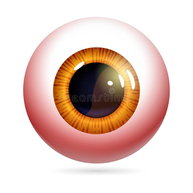 Red eyeball vector. Human eye front view close-up, cornea, retina, pupil. The red iris and white of the eye are red. Eyeball icon design isolated on white vector illustration