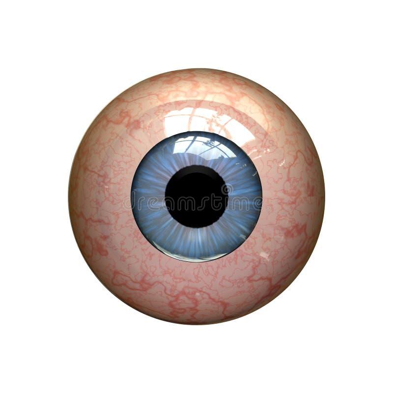 Red eyeball. On the white background vector illustration