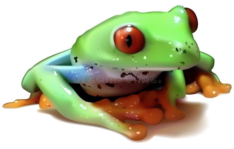 Red-eyed Baumfrosch stock abbildung