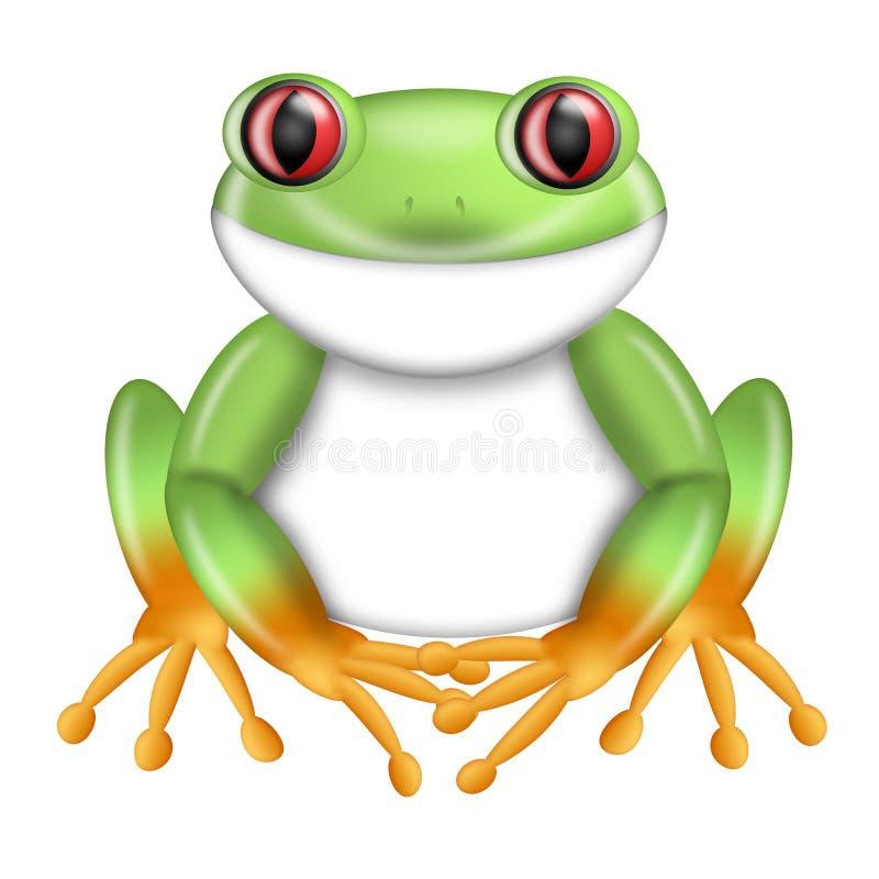 Red-Eyed Green Tree Frog Agalychnis Costa Rica vector illustration