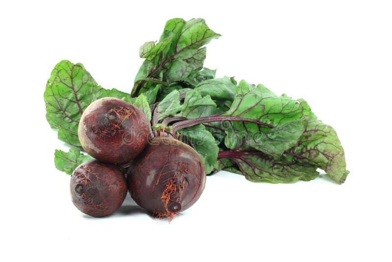 red för ätliga leaves för beta rotar nutritious arkivfoto