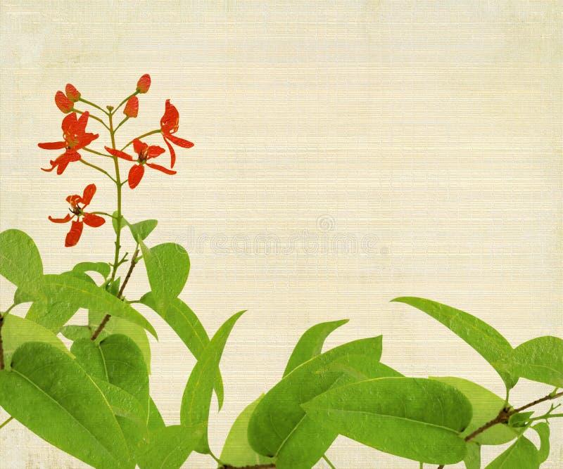 red för bambublommalövverk royaltyfri illustrationer