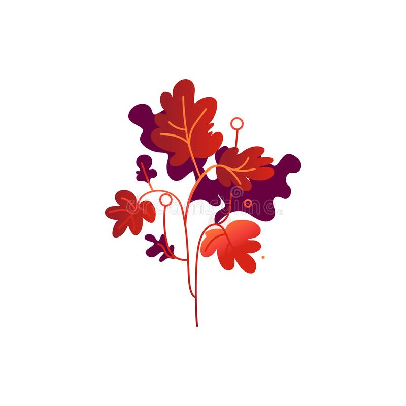 Red fall branch of leaves isolated on white background. Red fall branch of leaves isolated on white background - seasonal decorative element for autumn natural royalty free illustration