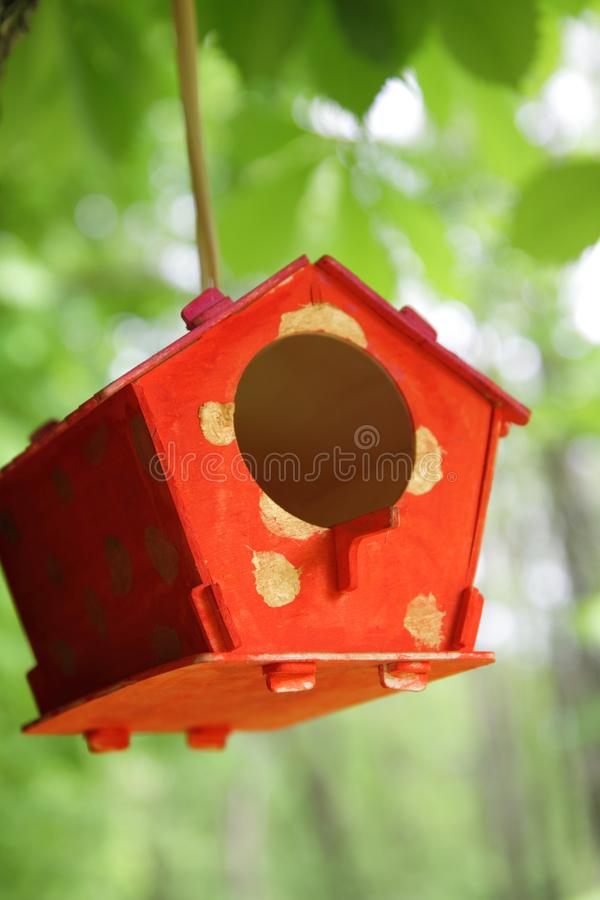 Red feeder for birds in the park. The bird house is hanging on a tree. stock images
