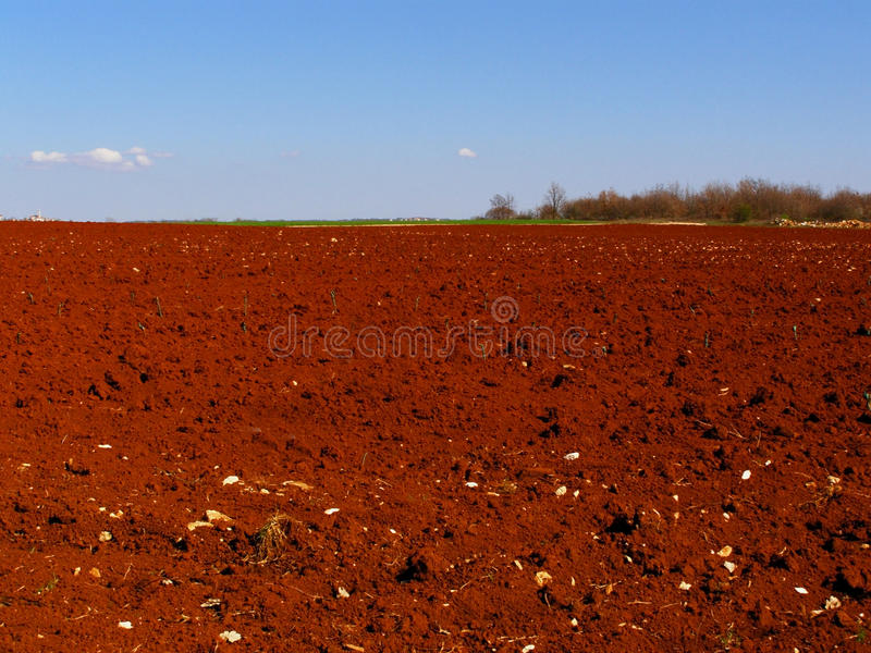 Download Red fields countryside stock photo. Image of empty, harvested - 15438420