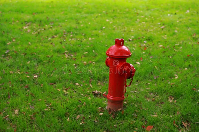 Red fire hydrant on the green grass background stock image