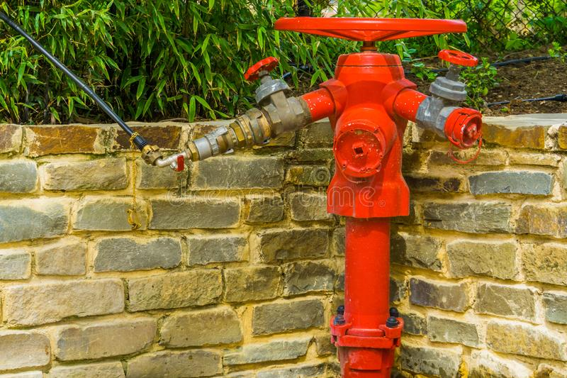 Red fire hydrant with multiple hose fittings, fire prevention system, outdoor safety. A red fire hydrant with multiple hose fittings, fire prevention system royalty free stock photo