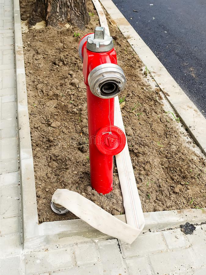Red fire hydrant with an opened seal and a long white fire hose without water on a new lawn at a recently asphalted road. Vertical frame stock image
